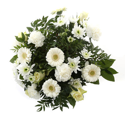 Springtime White(Springtime White)
